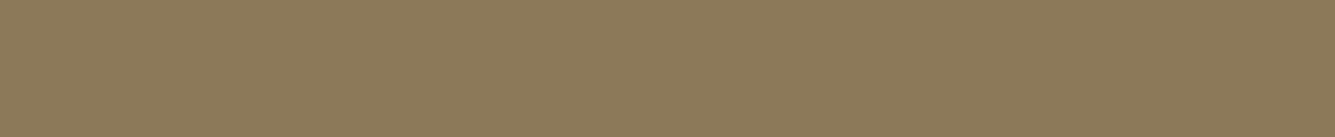 ibis-salumi